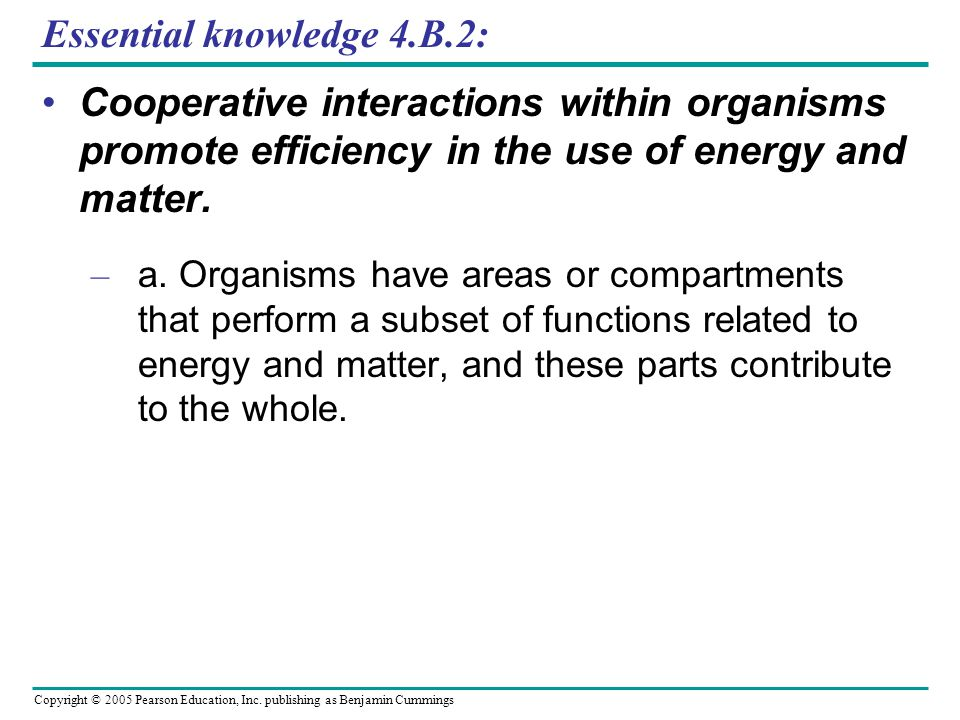Essential knowledge 4.B.2: