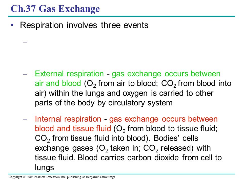 Ch.37 Gas Exchange Respiration involves three events