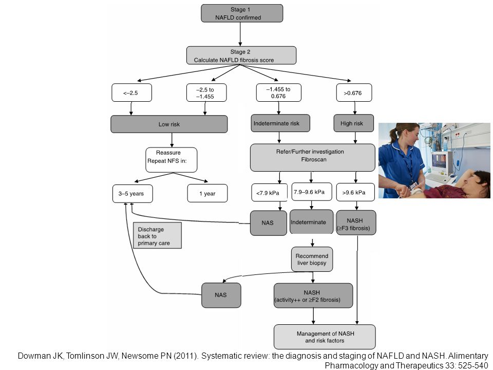 Proposed algorithm for the workup of a patient with NAFLD.