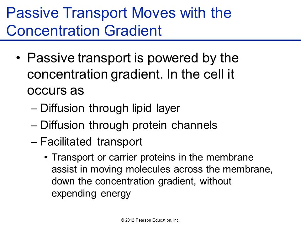 Passive Transport Moves with the Concentration Gradient