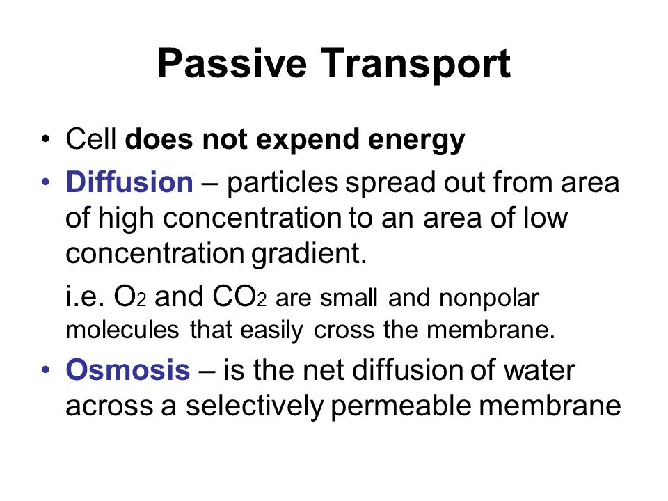 Passive Transport Cell does not expend energy