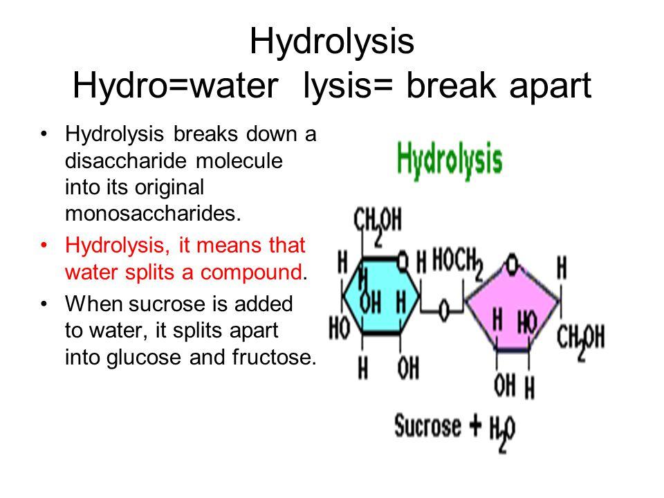 Hydrolysis Hydro=water lysis= break apart