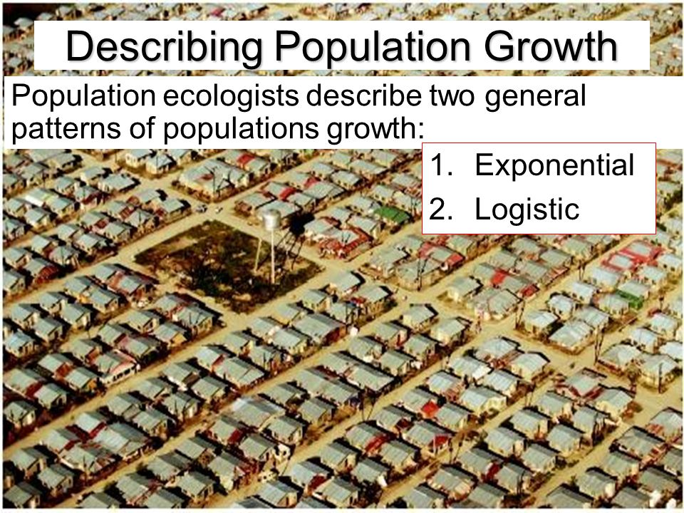 Describing Population Growth