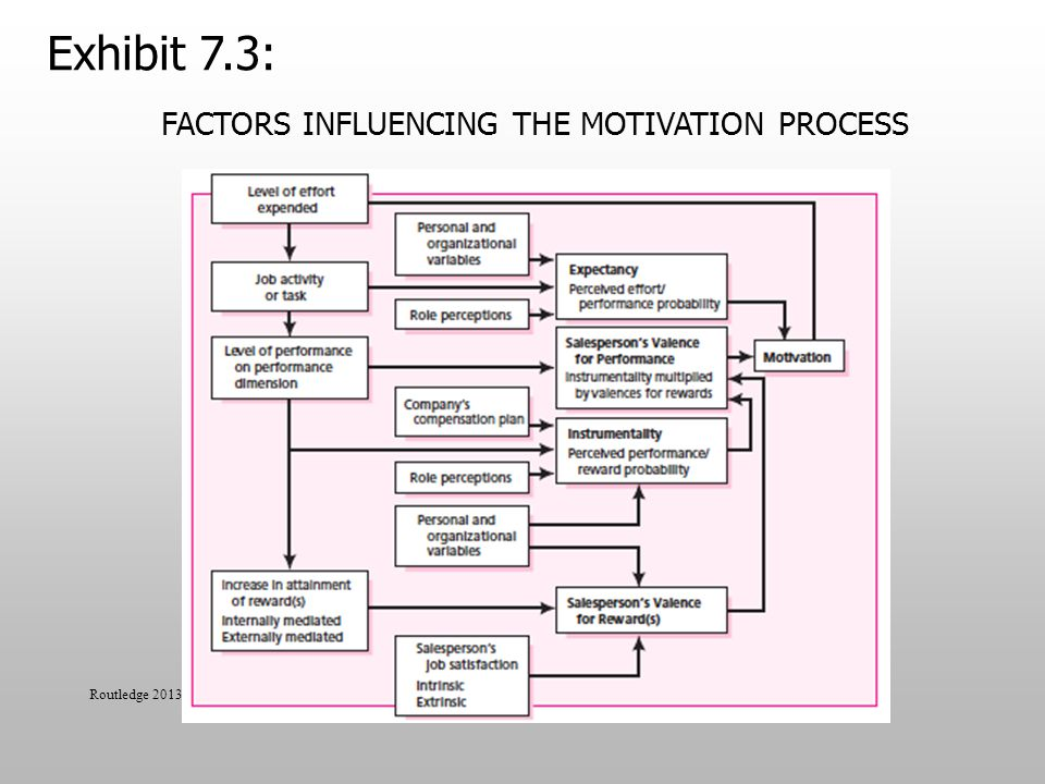 Factors Influencing the Motivation Process