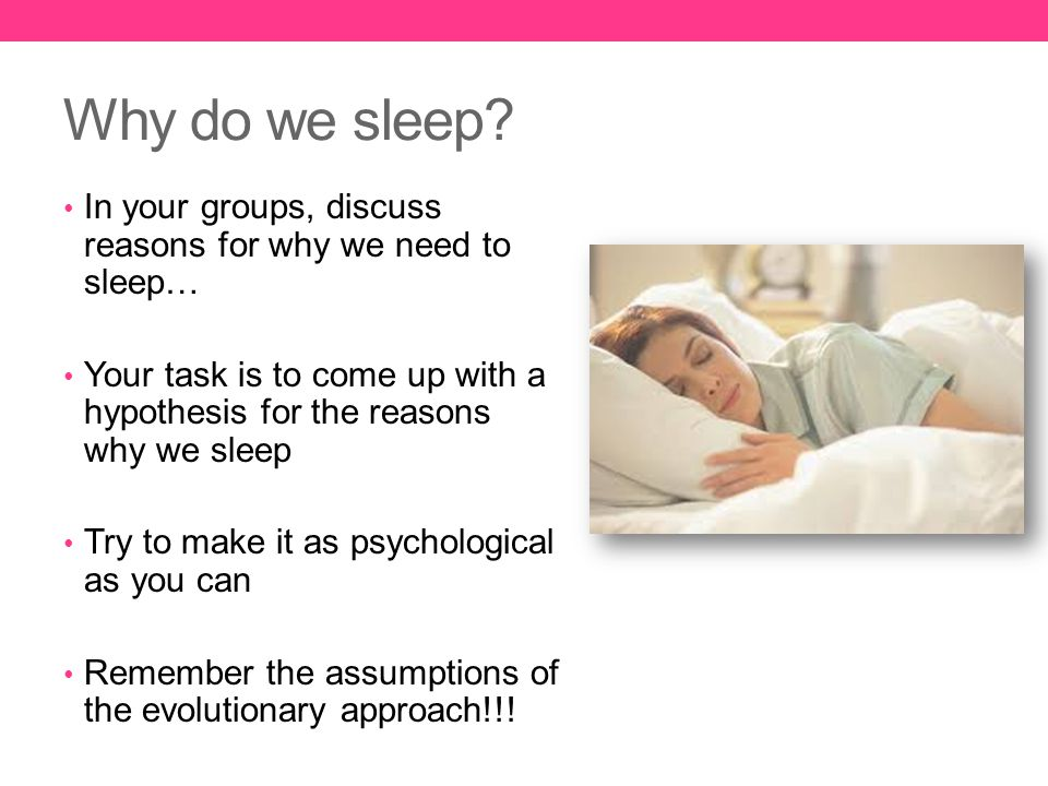 Why do we sleep In your groups, discuss reasons for why we need to sleep… Your task is to come up with a hypothesis for the reasons why we sleep.