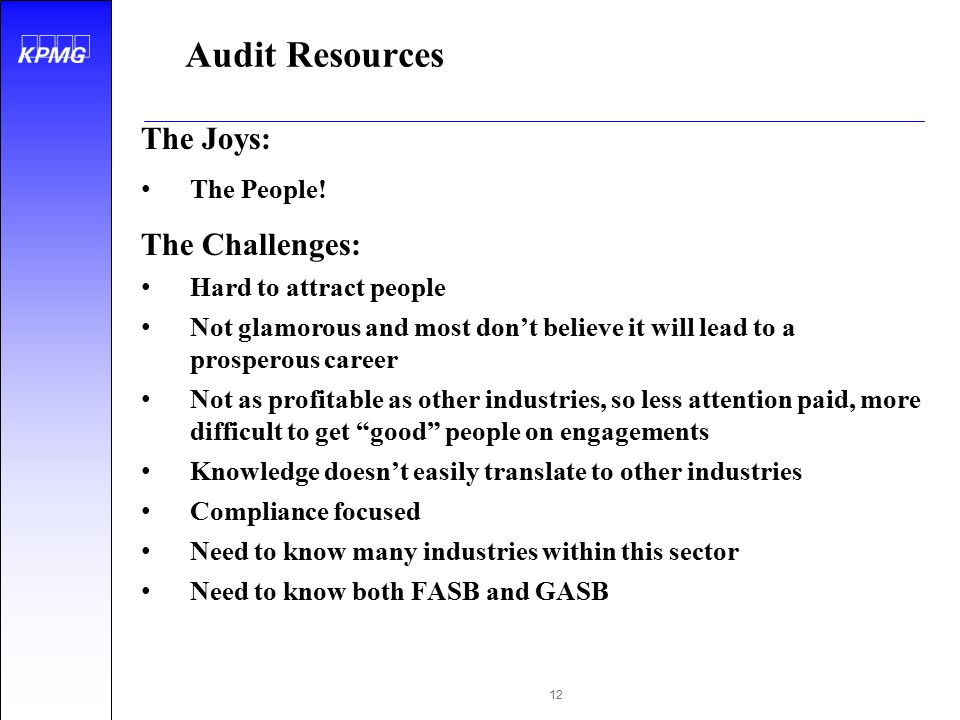 Audit Resources The Joys: The Challenges: The People!