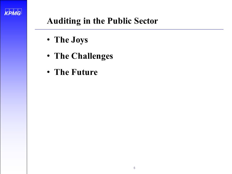 Auditing in the Public Sector