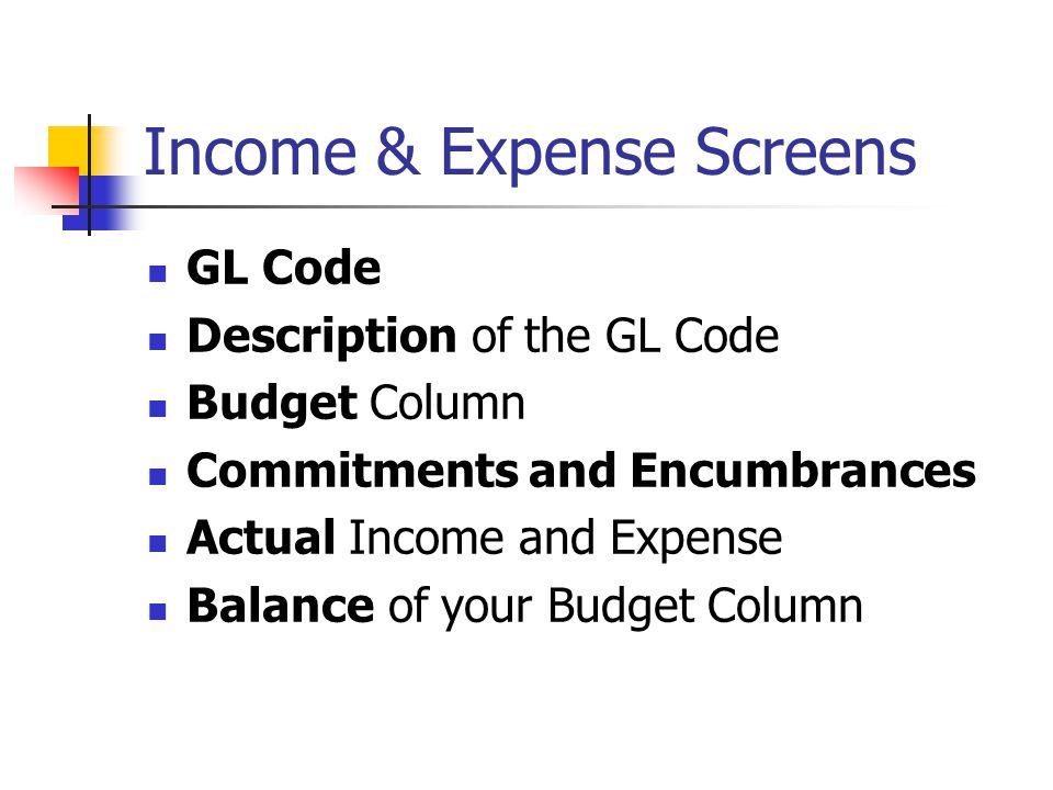 Income & Expense Screens