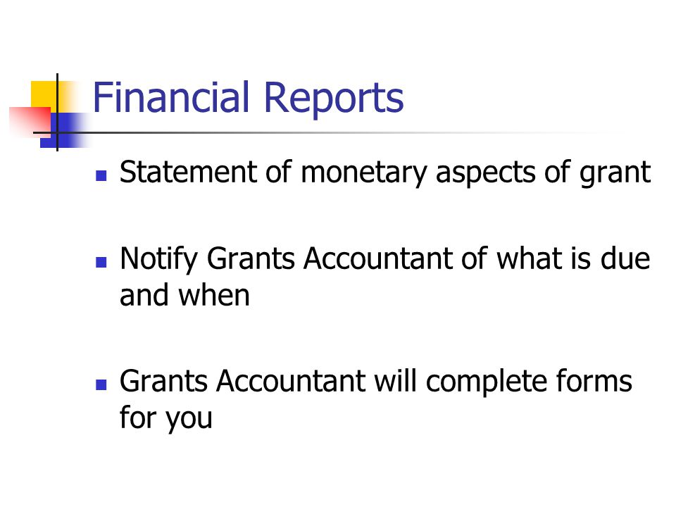 Financial Reports Statement of monetary aspects of grant