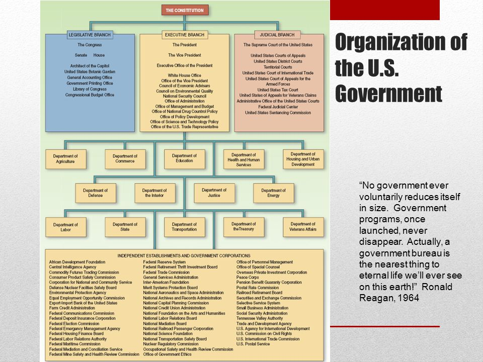 Organization of the U.S. Government