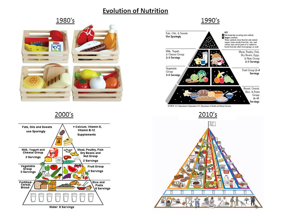Evolution of Nutrition