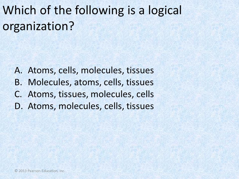 Which of the following is a logical organization