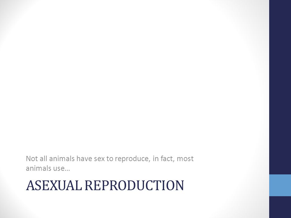 Not all animals have sex to reproduce, in fact, most animals use…