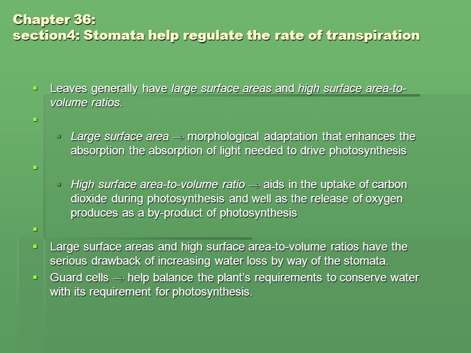 Chapter 36: section4: Stomata help regulate the rate of transpiration