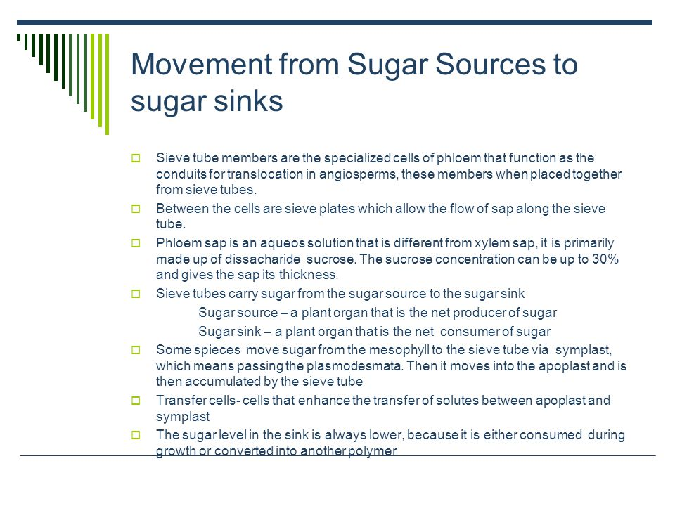 Movement from Sugar Sources to sugar sinks