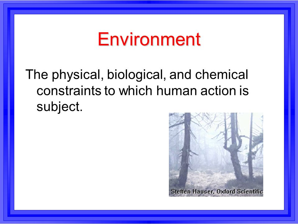 Environment The physical, biological, and chemical constraints to which human action is subject.