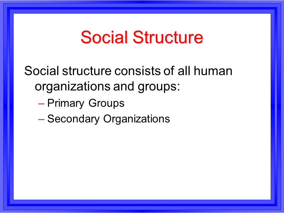 Social Structure Social structure consists of all human organizations and groups: Primary Groups.