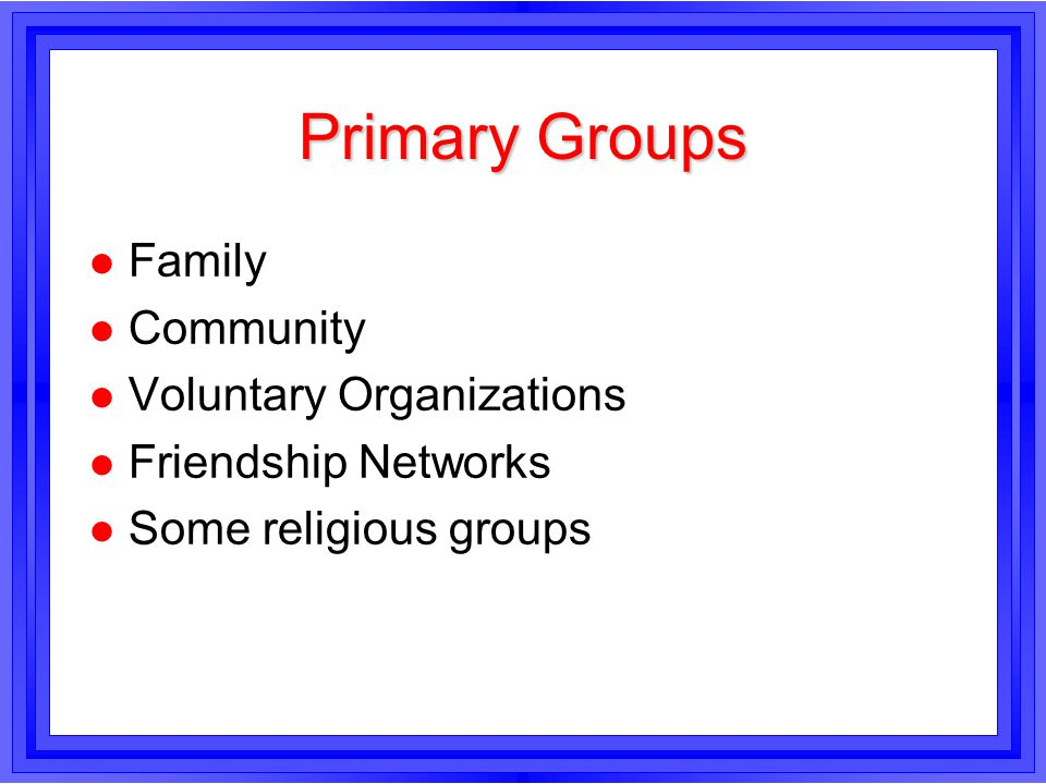 Primary Groups Family Community Voluntary Organizations