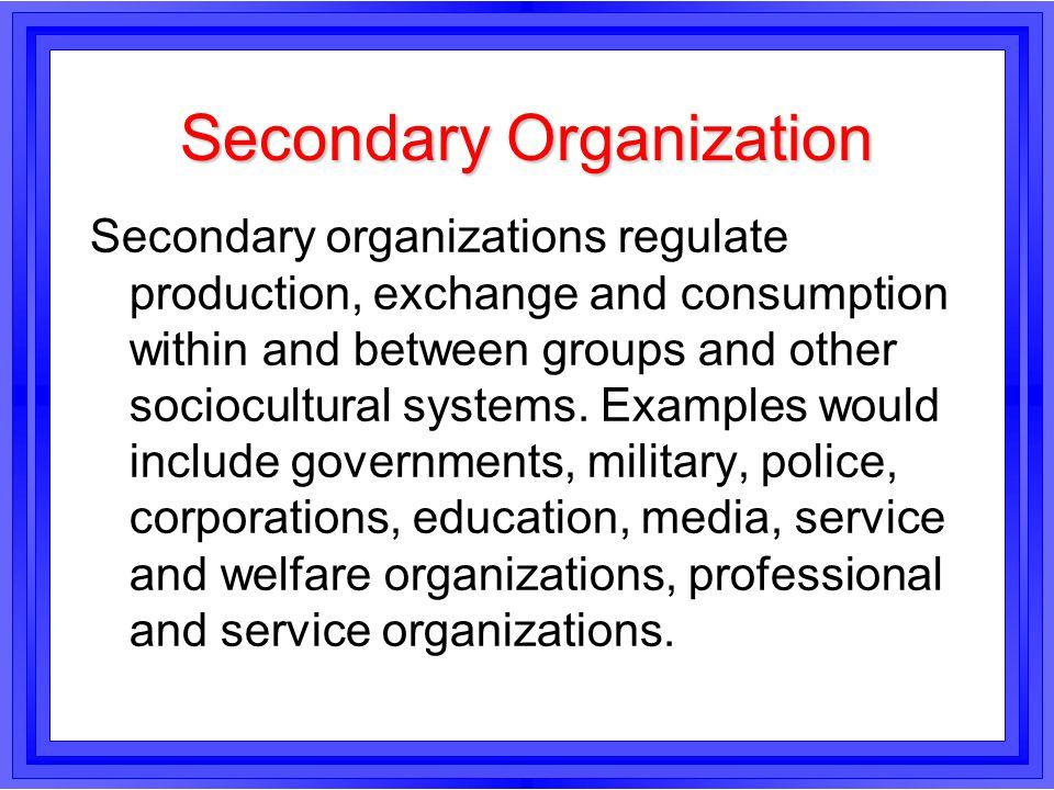 Secondary Organization