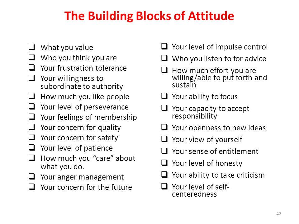 The Building Blocks of Attitude