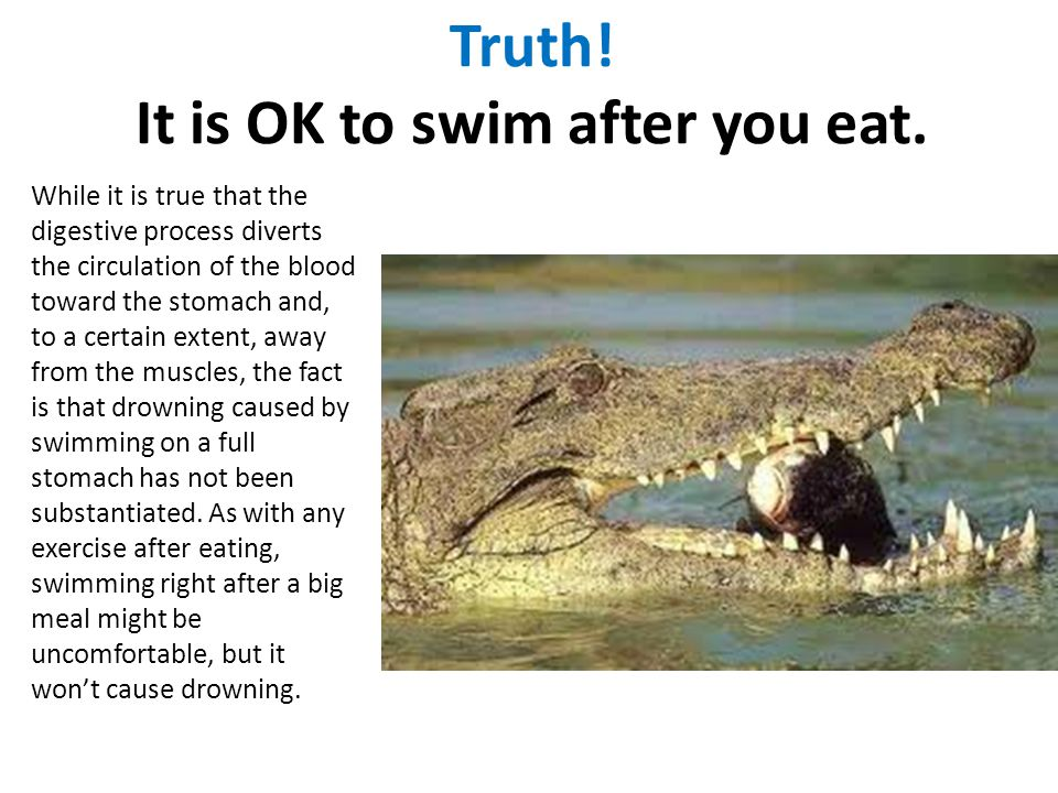 Truth! It is OK to swim after you eat.