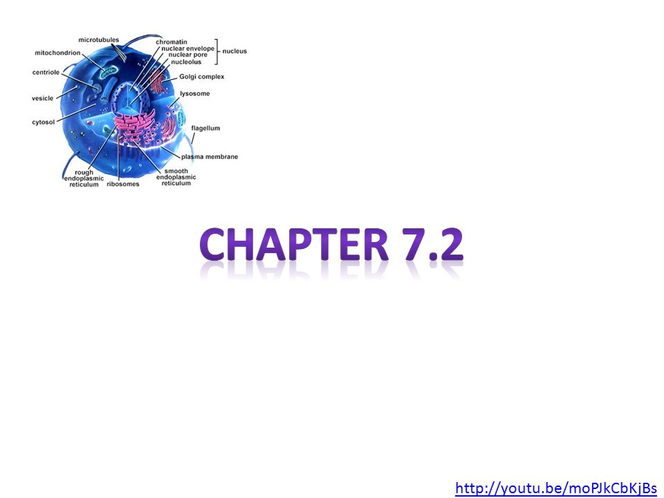 Chapter 7.2 http://youtu.be/moPJkCbKjBs