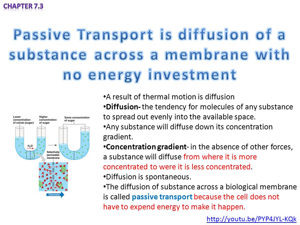 Passive Transport is diffusion of a substance across a membrane with