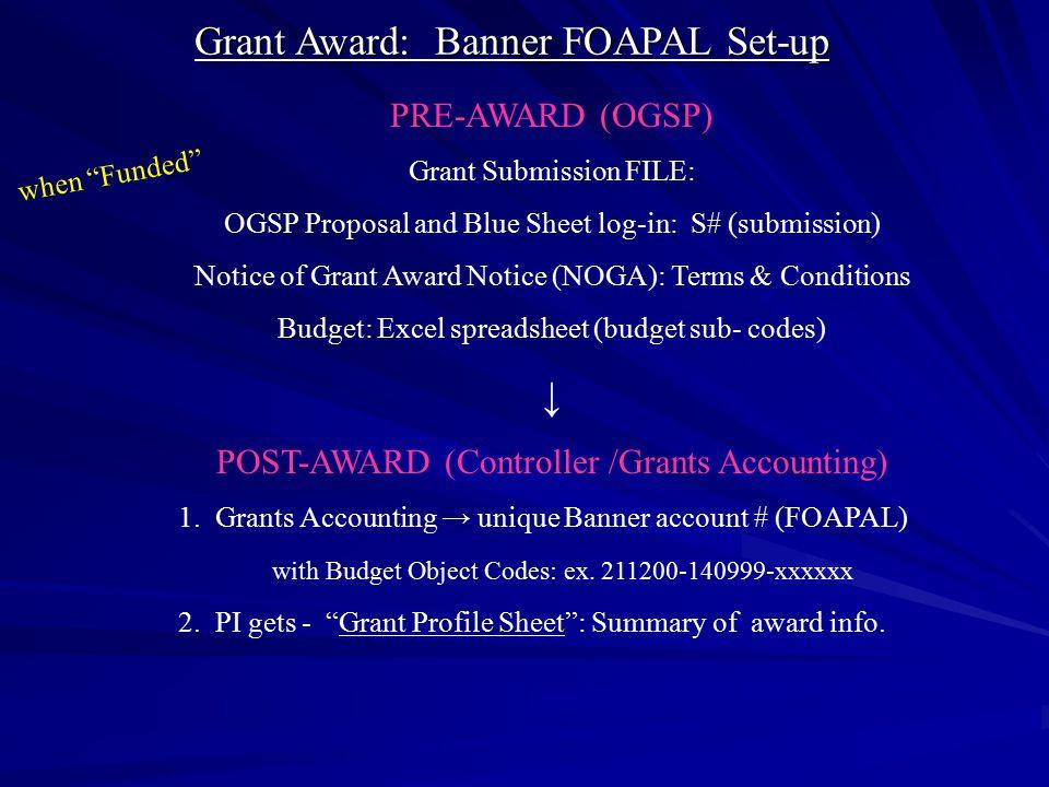 Grant Award: Banner FOAPAL Set-up