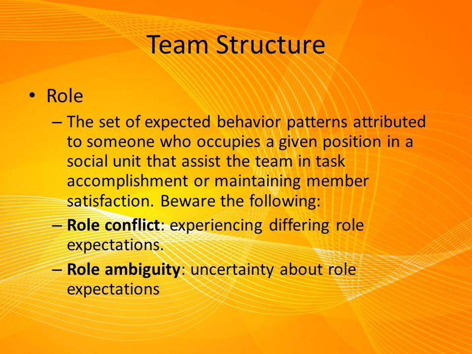 Team Structure Role.