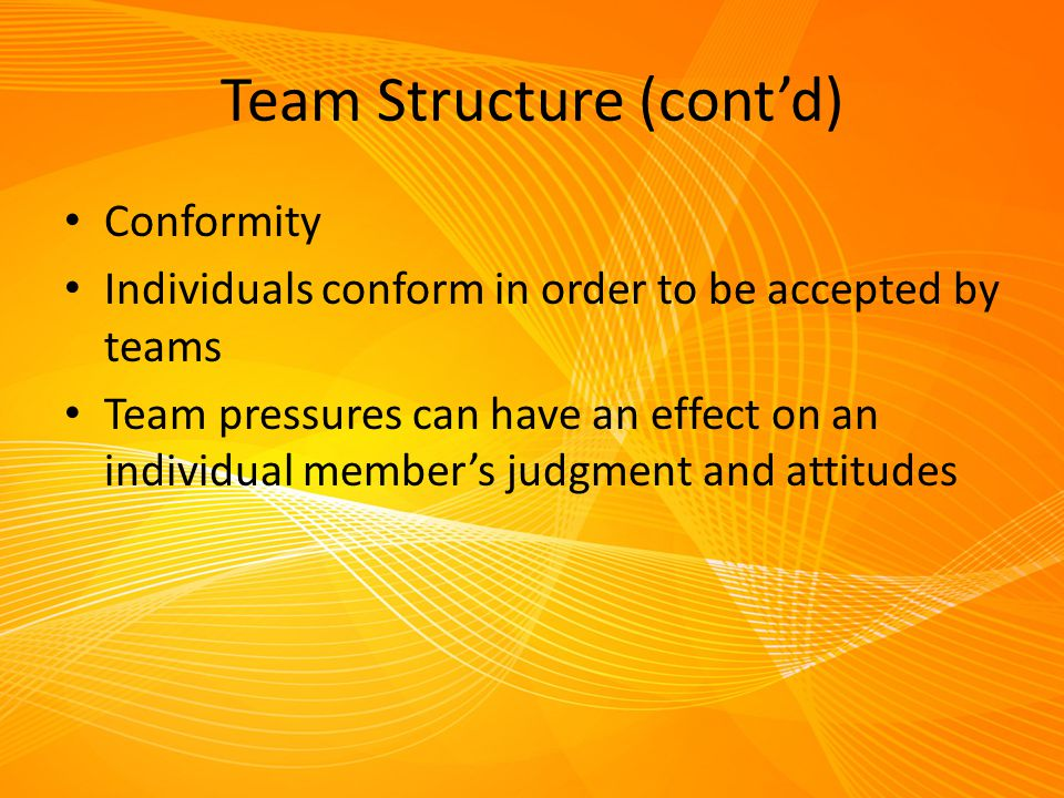 Team Structure (cont'd)