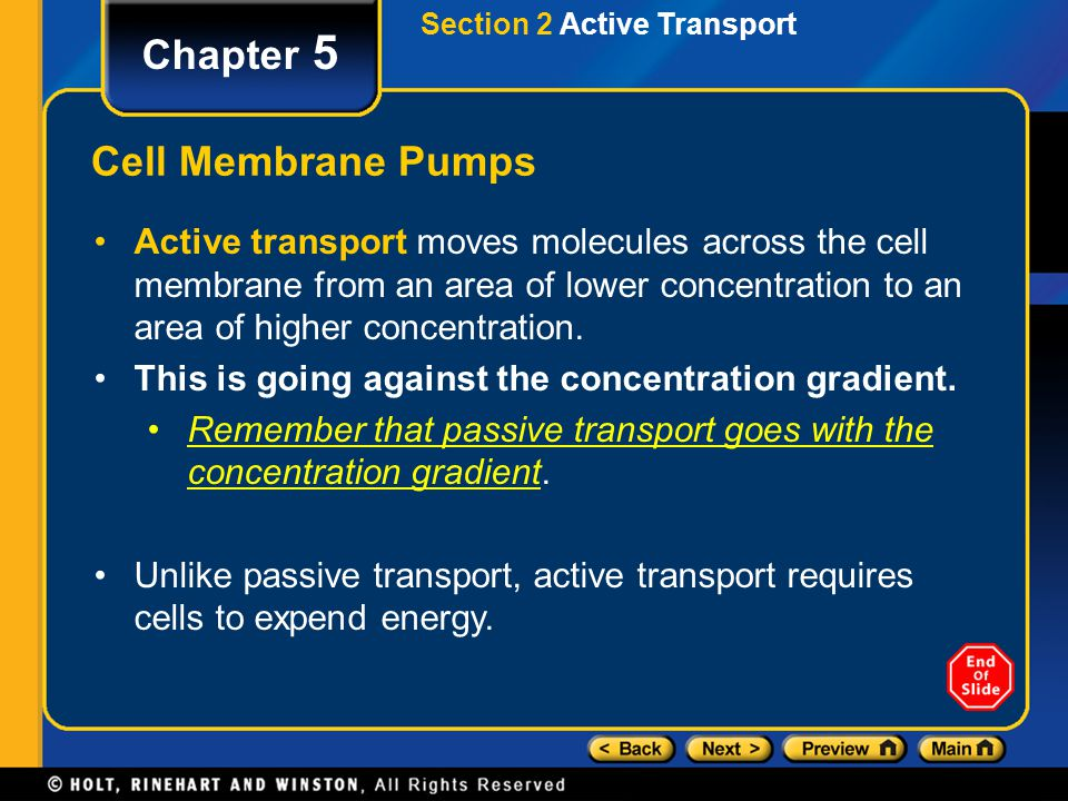 Chapter 5 Cell Membrane Pumps