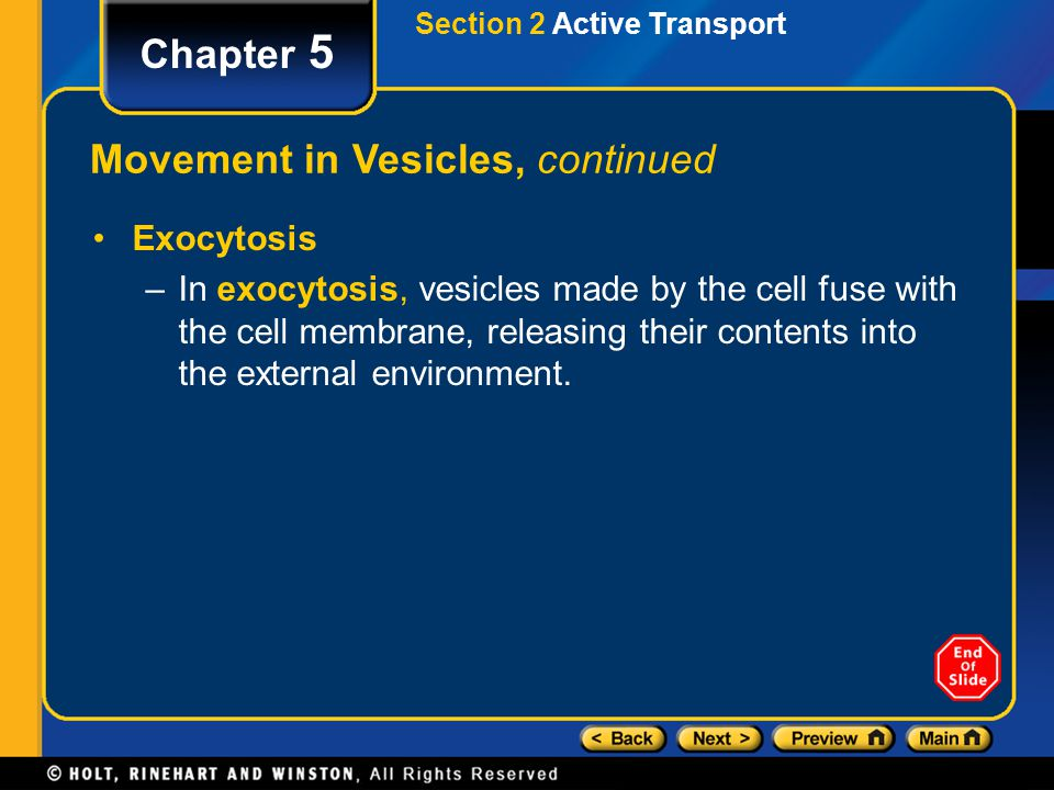 Movement in Vesicles, continued