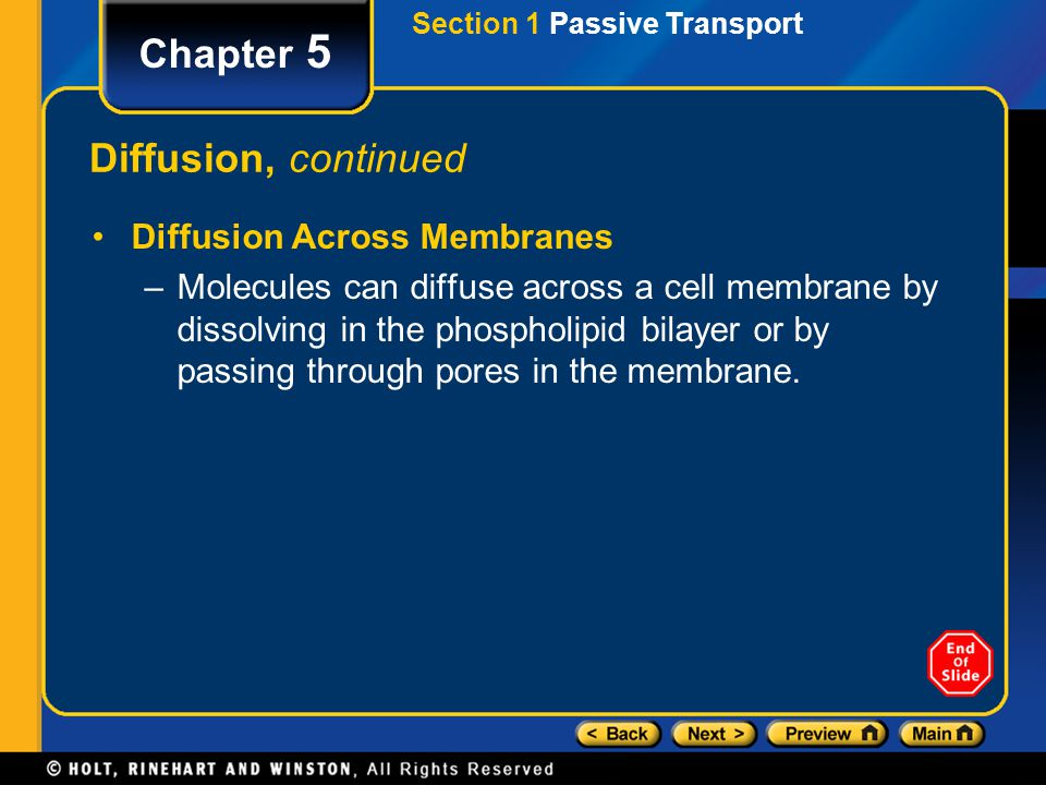 Chapter 5 Diffusion, continued Diffusion Across Membranes