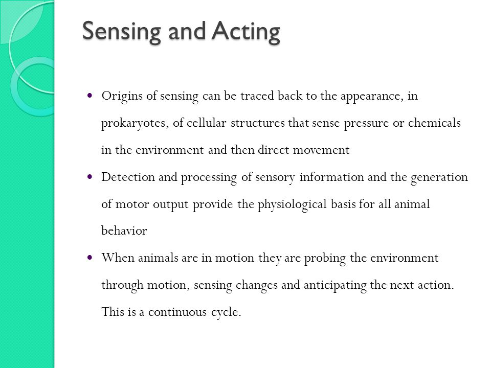 Sensing and Acting