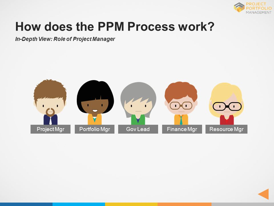 How does the PPM Process work