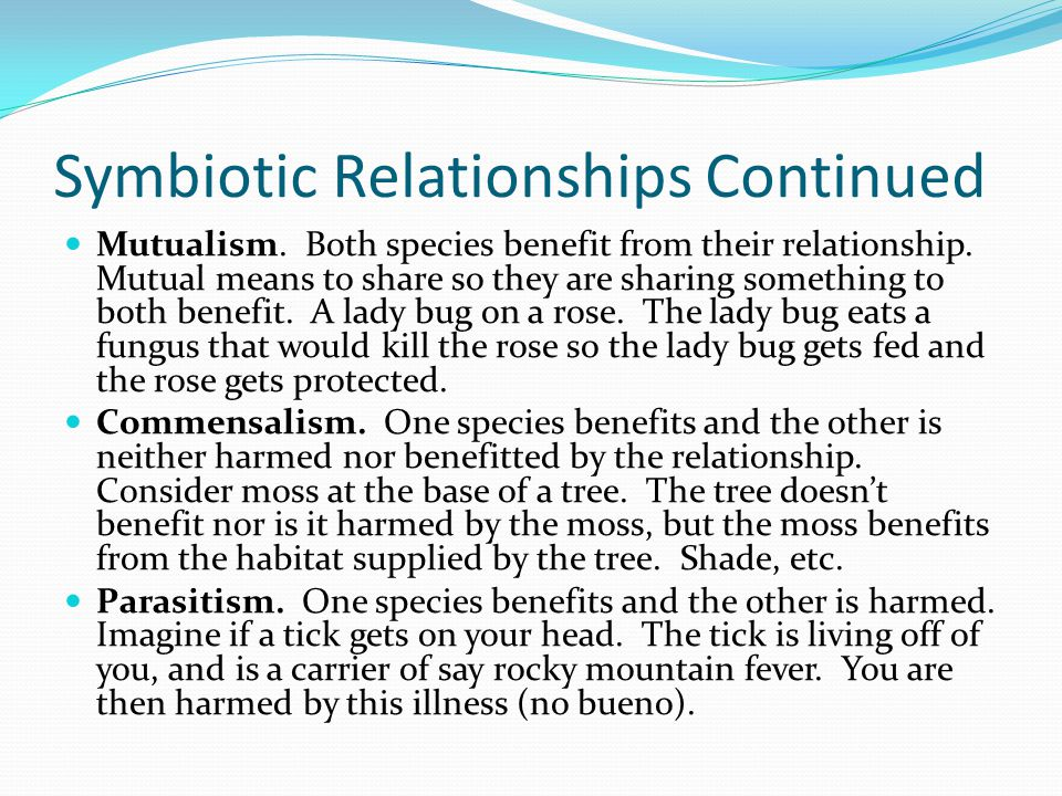 Symbiotic Relationships Continued