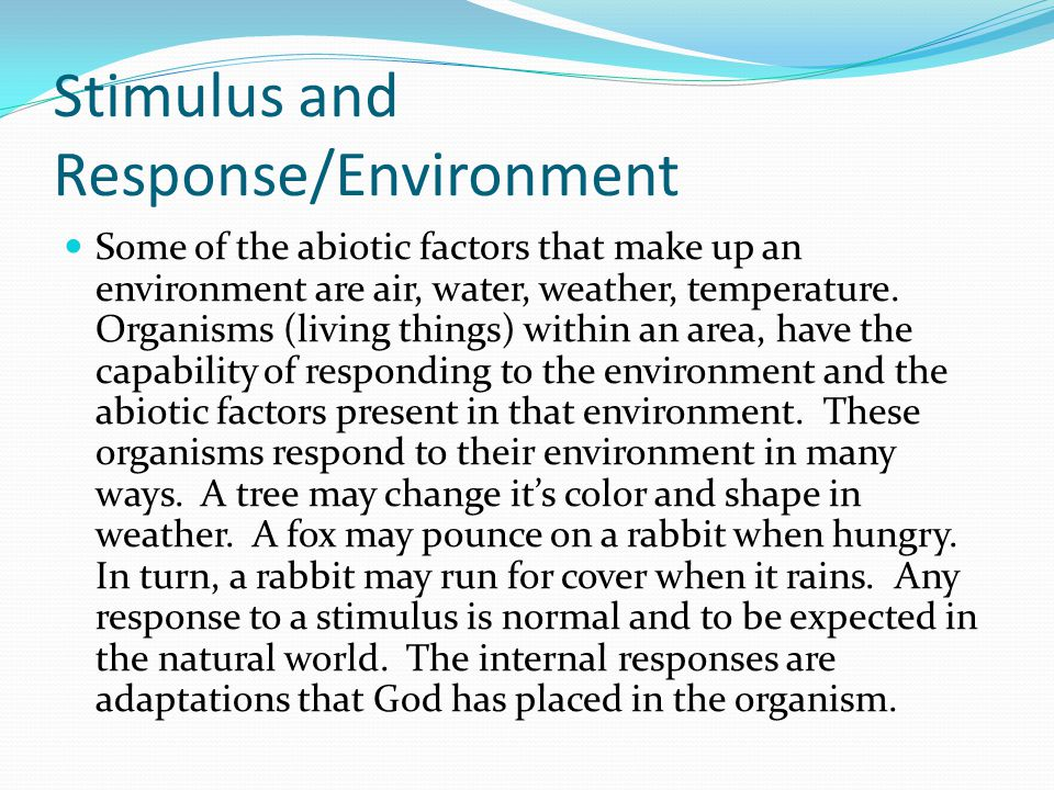 Stimulus and Response/Environment