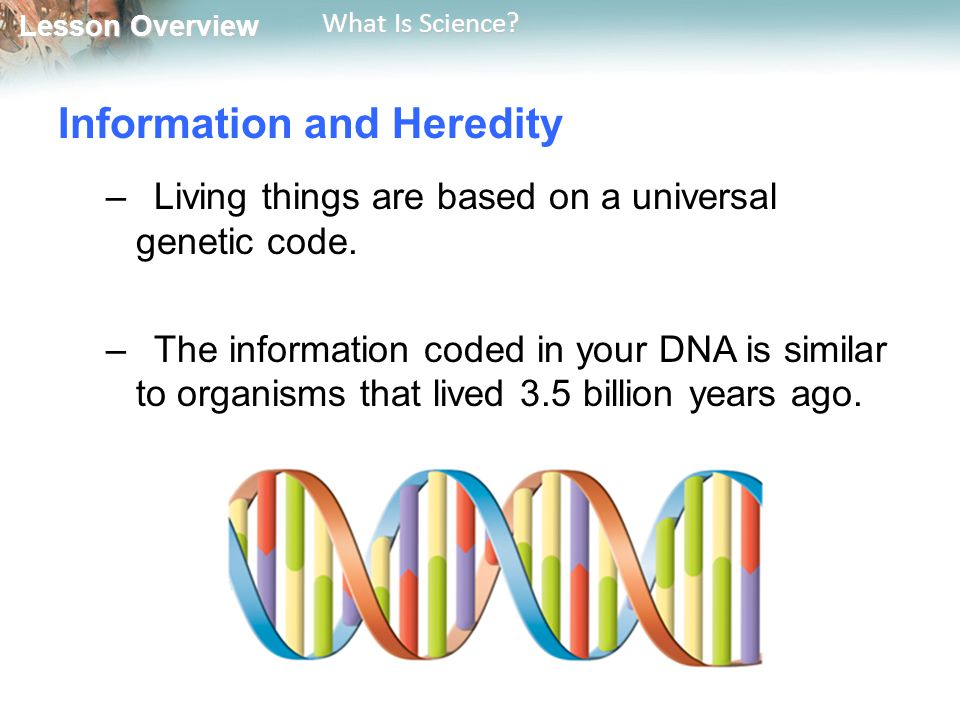 Information and Heredity