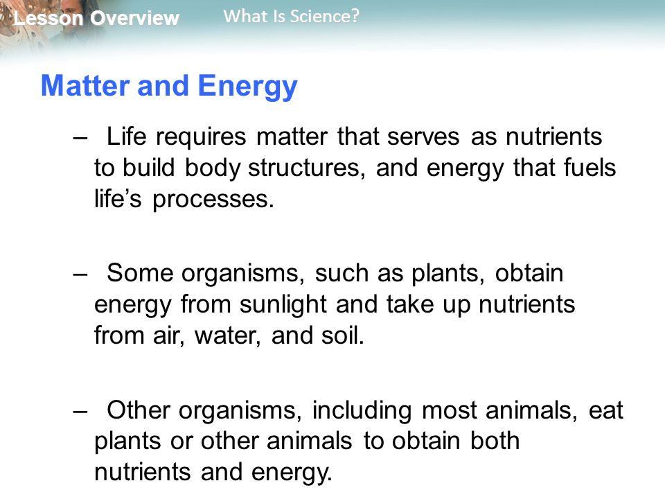 Matter and Energy Life requires matter that serves as nutrients to build body structures, and energy that fuels life's processes.
