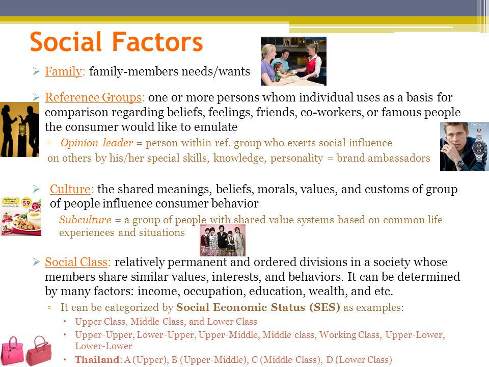 Social Factors Family: family-members needs/wants