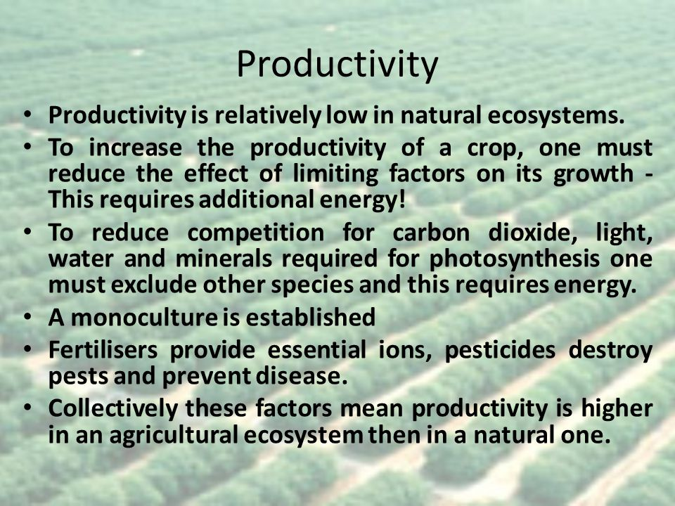 Productivity Productivity is relatively low in natural ecosystems.