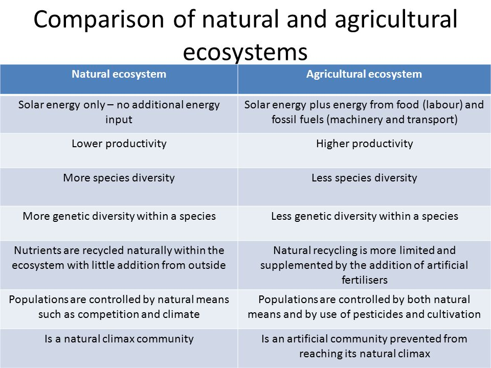 Comparison of natural and agricultural ecosystems
