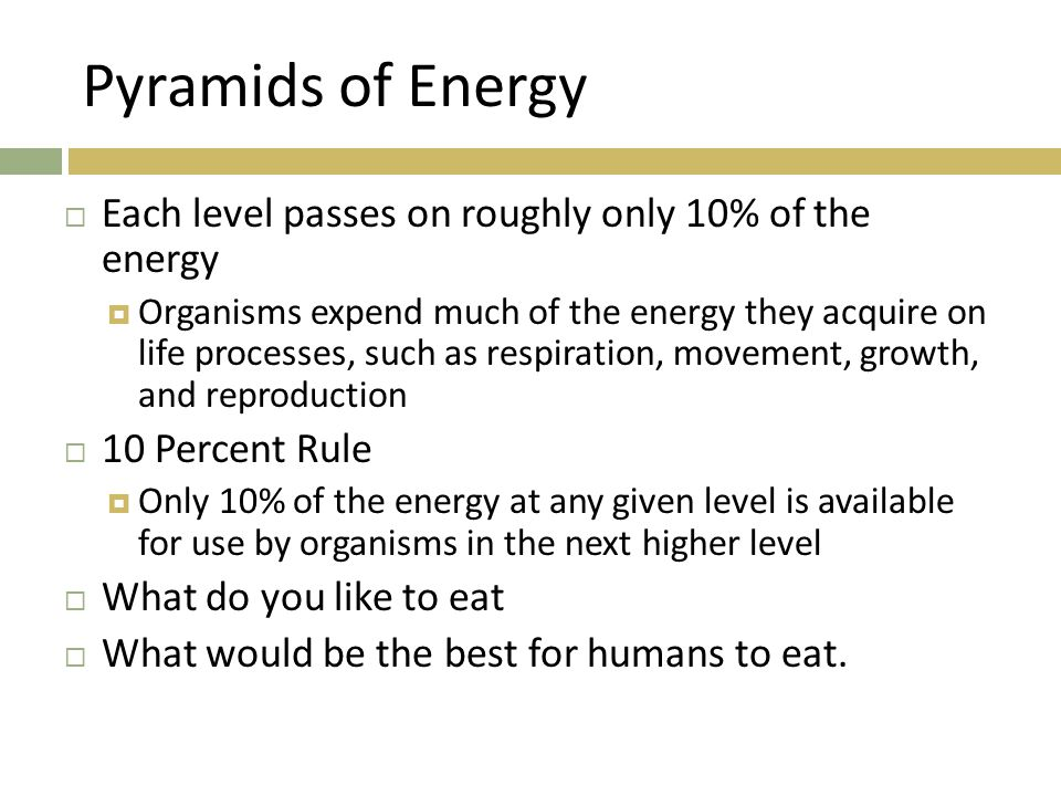 Pyramids of Energy Each level passes on roughly only 10% of the energy