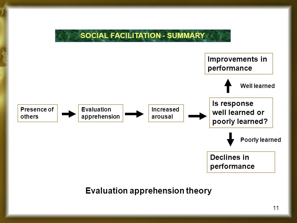 SOCIAL FACILITATION - SUMMARY Evaluation apprehension theory