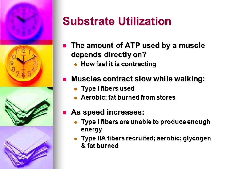 Substrate Utilization