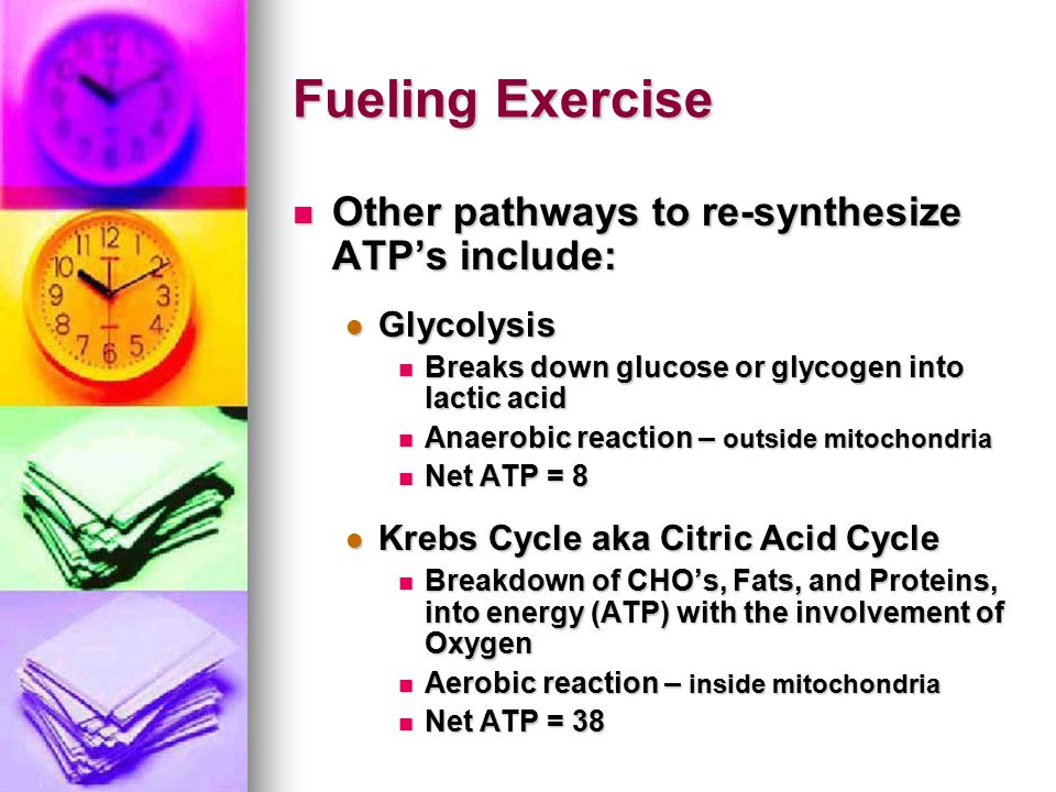 Fueling Exercise Other pathways to re-synthesize ATP's include: