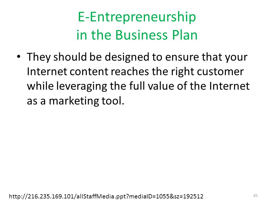 E-Entrepreneurship in the Business Plan