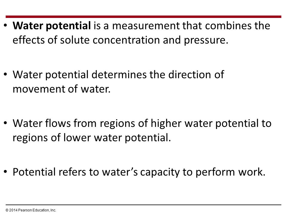 Water potential determines the direction of movement of water.