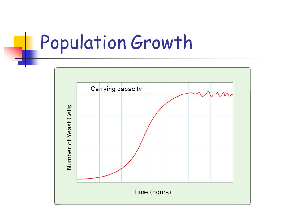 Population Growth Carrying capacity Number of Yeast Cells Time (hours)