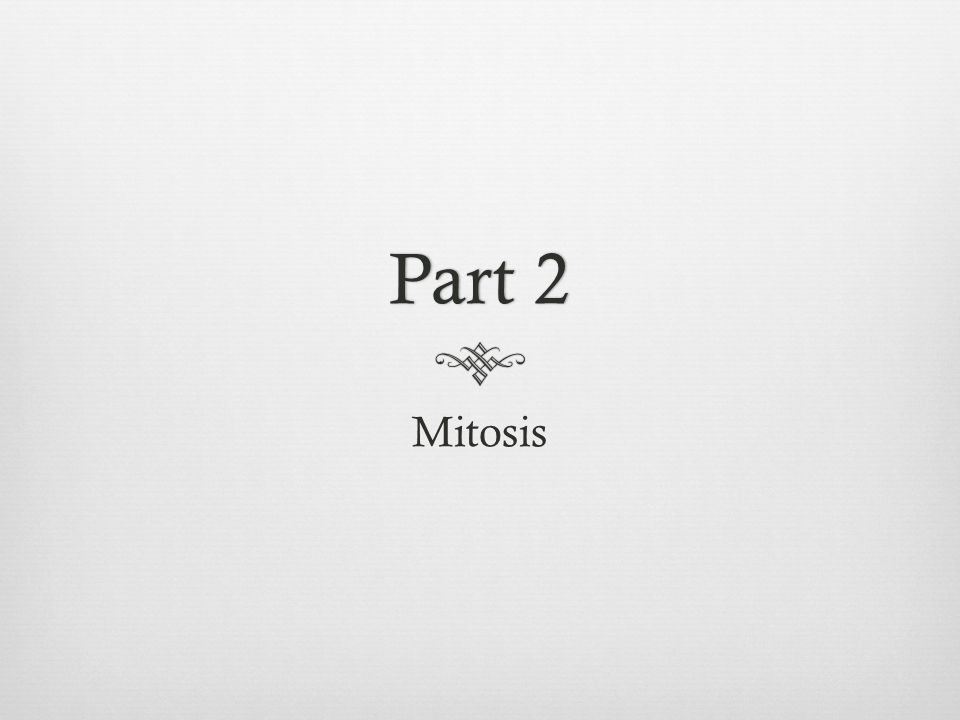 Part 2 Mitosis